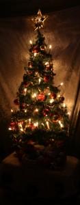 Tree 12